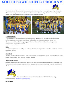 Cheer Free Clinic Flyer
